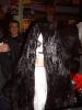 Halloween2008_33
